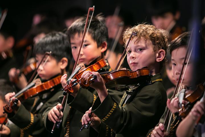 Music Violin Performance